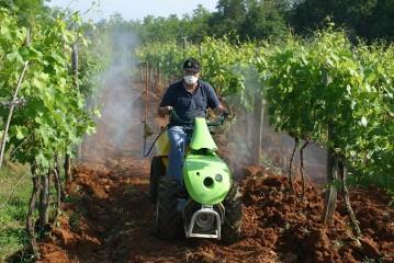 Alegeti motocultorul dvs. in functie de culturile agricole pe care le aveti