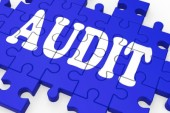 Tehnicile de baza privind procedurile de audit intern