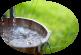 Denisipari puturi de apa – pentru o apa fara impuritati