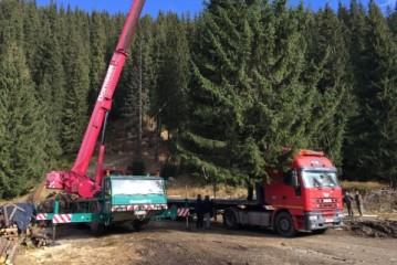 Servicii de transporturi speciale furnizate de catre profesionistii de la Elbacor Trading!