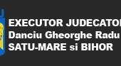 Executor judecatoresc. Despre urmarirea mobiliara a creantelor