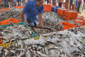Mănâncă pește regulat și vei micșora riscul de cancer